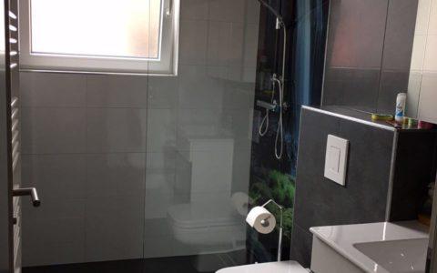 dusche glasrückwand
